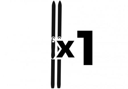 1 par ski